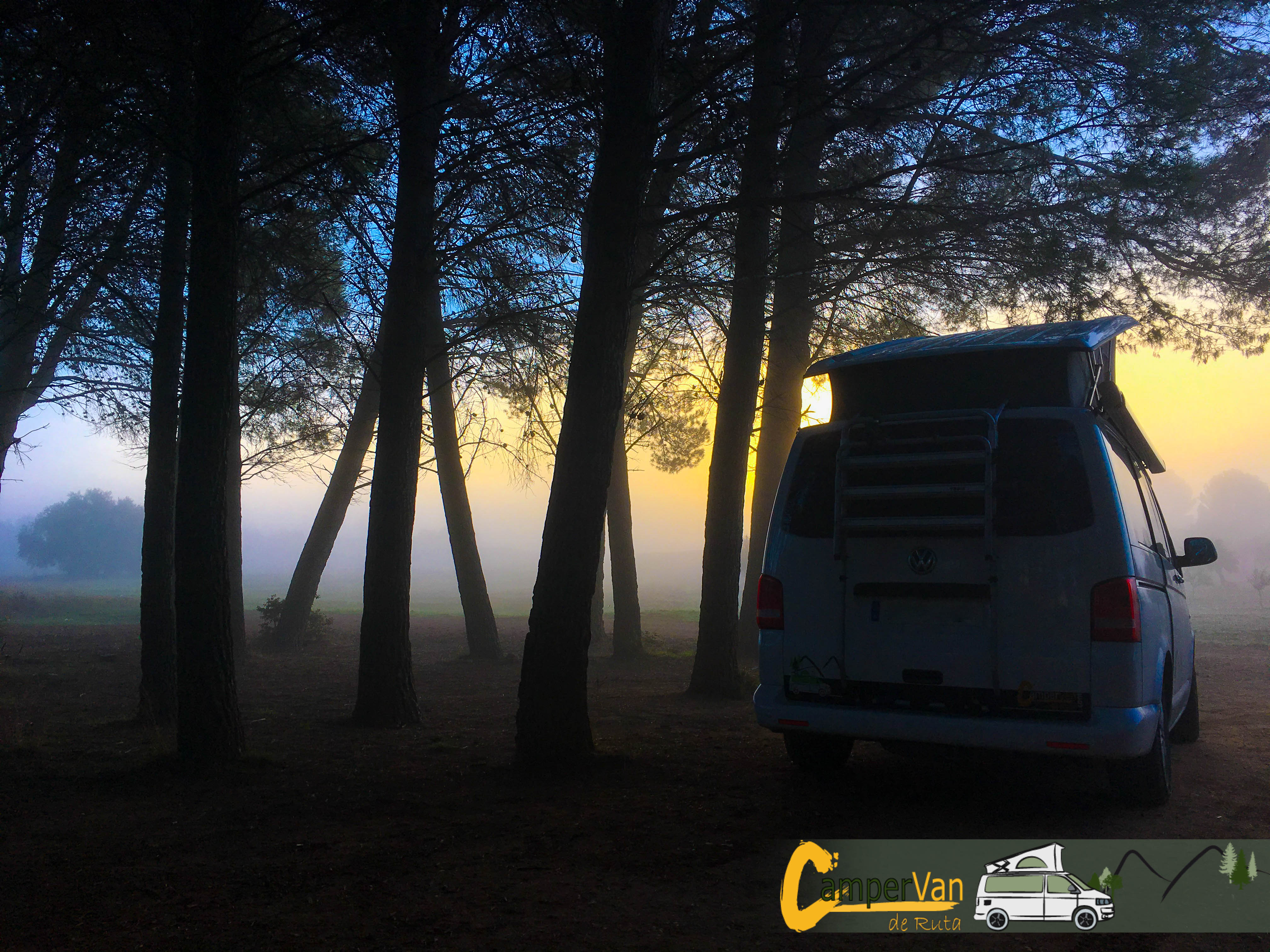 Campervan in a foggy, colorful forest