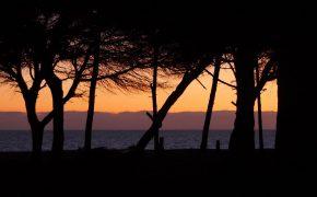 Portugal Coast Van Travels